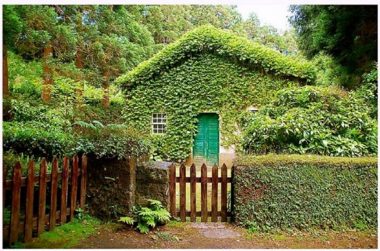 20130224-MS-IL_VERDE_IN_UNA_STANZA_casa_verde #2_750x496