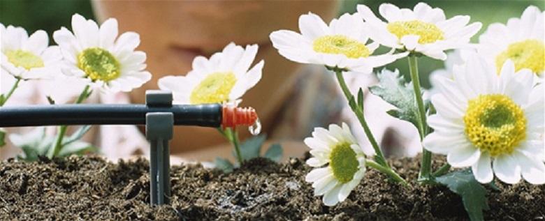 20130610-irrigazione-piante
