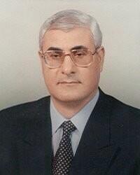 20130704-Adli Mansour