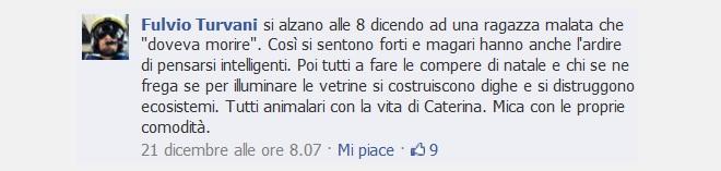 20131228-catsim-fulvioturvani-660x157