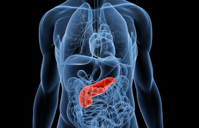 20140603-pancreas-disease-650x420