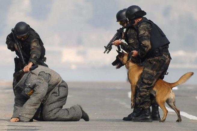 20140911-antiterrorism-655x436
