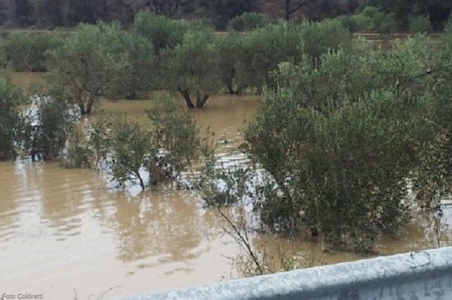20141014-alluvione-genova-coldiretti-655x435