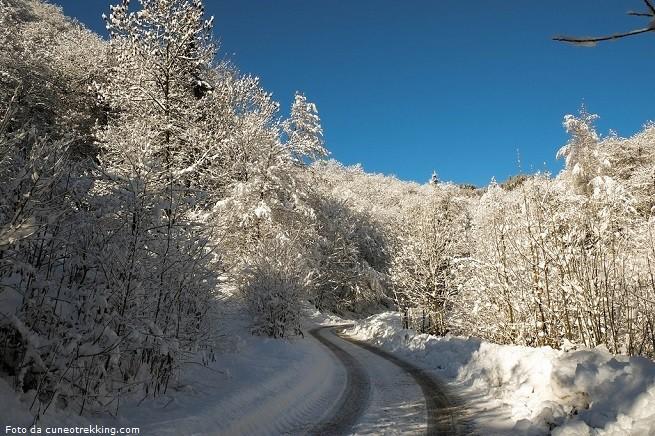 Con la neve può essere piacevole fare una passeggiata con le racchette da neve (ciaspe o ciaspole, secondo il ladino della Val di Non)