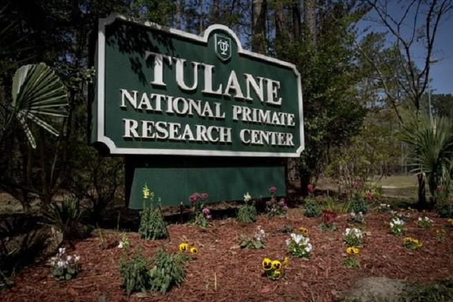 L'ingresso del Tulane National Primate Research Center della locale università (foto Tulane University)