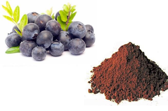 20150529-nutraceutica-mirtilli-cacao