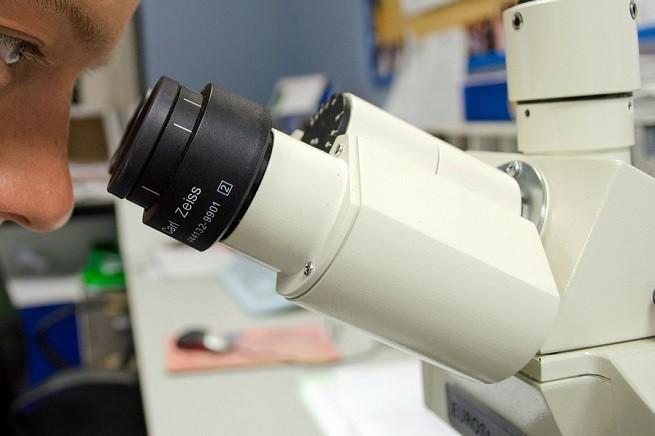 20150604-ricerca-laboratorio-655x436