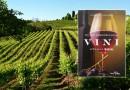 L'Italia del buon vino nella seconda edizione della guida enologica di Daniele Cernilli
