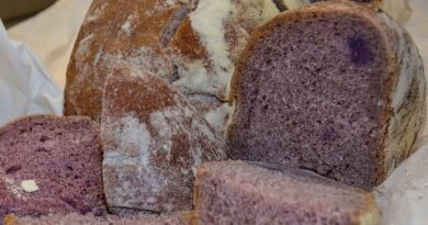 Da Pisa arriva Well Bred, il 'pane viola', ma non è un espediente di marketing